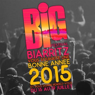 Big festival 2015 ctms