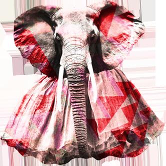 elephantpanametutu.png