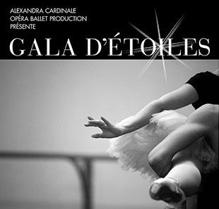 Gala d etoiles 3981772268195584823
