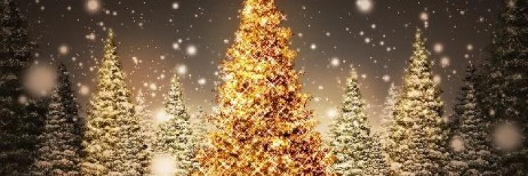 Noel christmas